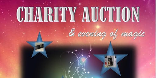 Fun Charity Auction Fundraiser & Evening of Magic (In Aid of 'Burton Hope')