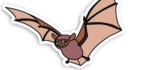 Family Bat Night (5yrs+) tickets