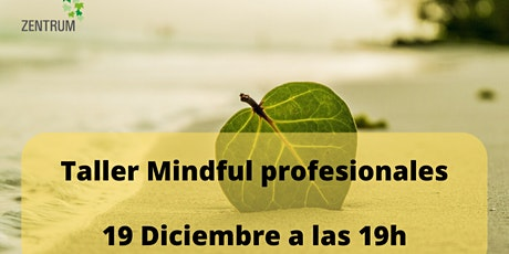 Taller Mindful profesionales entradas