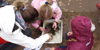 Outdoor Learning Session - Mini-Beasts Hunt (4yrs+)