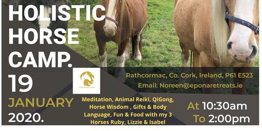 HOLISTIC HORSE CAMP