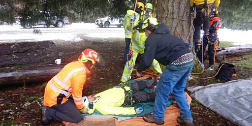 Aerial Rescue Training (WFA for Arborists Prerequisite)