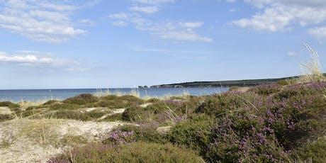 Nordic Walking on the Jurassic Coast tickets