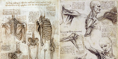 ANATOMY FOR ARTISTS: Understanding the Basics tickets