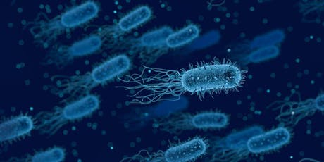 """""""Smart surfaces"""" to address infection and antimicrobial resistance tickets"""