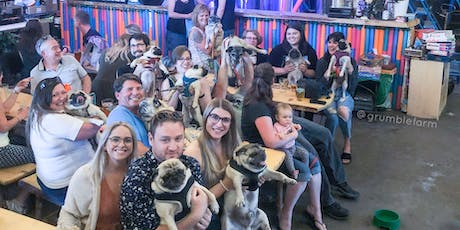 Pugs 'n Pints 2.0 - PUGLY CHRISTMAS SWEATER EDITION tickets