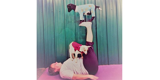 Indoor Goat Yoga by Shenanigoats - Nashville, Sat. @11:30AM