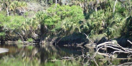 EcoWalk: Unique Preserves of Sarasota County: Sleeping Turtles North