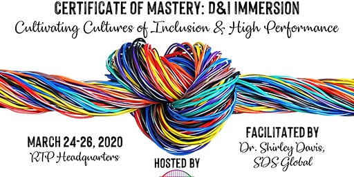 A Certificate of Mastery Program: 3 Day Immersion in Diversity & Inclusion