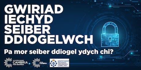 Gwiriad Iechyd Seiber Ddiogelwch  - Pa mor seiber ddiogel ydych chi? tickets