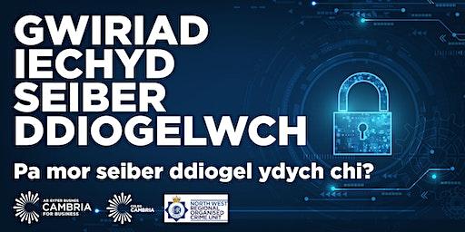 Gwiriad Iechyd Seiber Ddiogelwch  - Pa mor seiber ddiogel ydych chi?