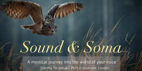 SOUND & SOMA - A Mystical Journey Into The World of Your Voice tickets