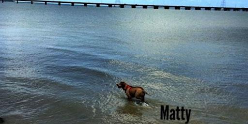 Walkabout at James River (Mattys' Favorite)