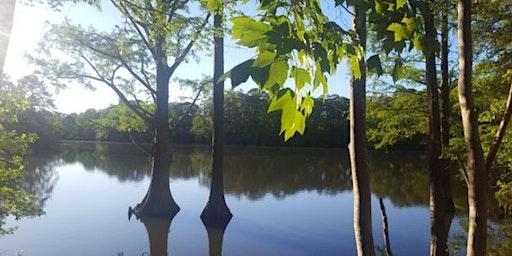 Explore Lake Maury