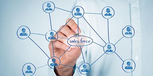 Salesforce.com: Administrator (Lightning) Class | Charleston, South Carolina