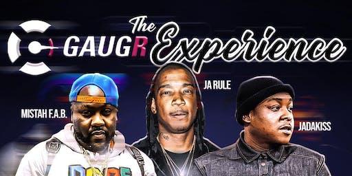 The Gaugr Experience, Round 2