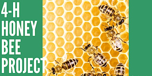 2020 4-H Honey Bee Project Registration