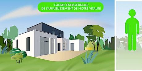 Initiation à la géobiologie - Environnement naturel et environnement technologique  tickets