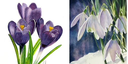 Beginners' Art Class : Learn To Draw ... Snowdrops and crocuses
