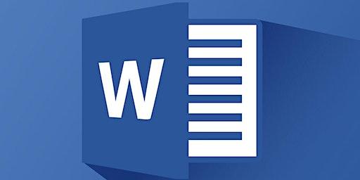 Microsoft Word 201 (T1-20)