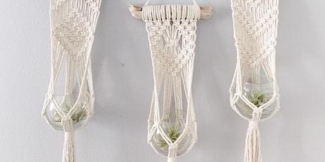 Macramé Plant Hanger Workshop at SLO Botanical Garden tickets