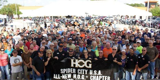 Spider City HOG