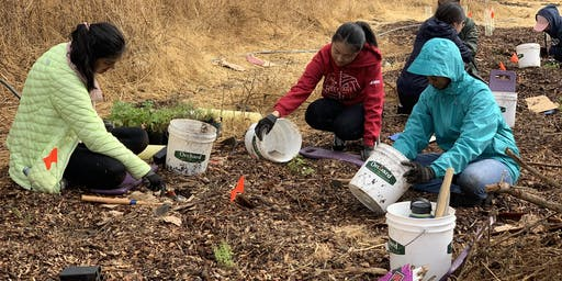 Wednesday Weed Warriors: Habitat Restoration at Arastradero Preserve