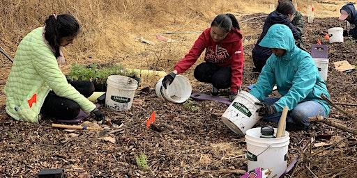 Wednesday Weed Warriors: Habitat Restoration at Arastradero Preserve