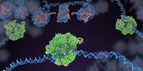 CRISPR Genome Editing: Emerging Technologies and Applications tickets