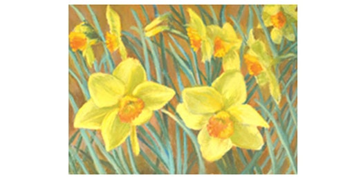 Beginners Art Class : Learn To Draw ... Daffodils