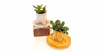 Mighty Mud Presents: Hand Building for Beginners: Small Succulent Planter & Tray with Donna Barton