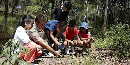 Junior Rangers Bushcraft - Cape Conran Coastal Park
