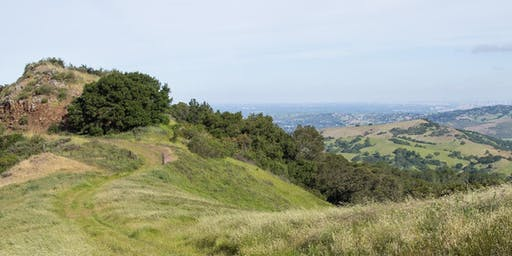Afternoon Hike at Rancho Cañada del Oro with POST!