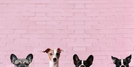 Toronto Dog Moms X Brunswick Bierworks Puppy Love tickets