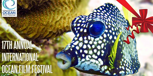 Give the Ocean a Voice! Support the 17th AnnuaI IOFF