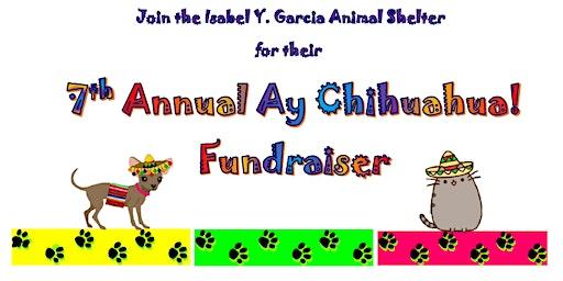 Ay Chihuahua Port Isabel Animal Shelter Fundraiser