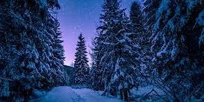 Winter Solstice Yoga Class