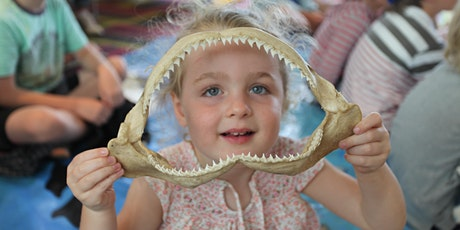 Shark Detectives (ages 5-8) 7 January 2020 - Queenscliff tickets