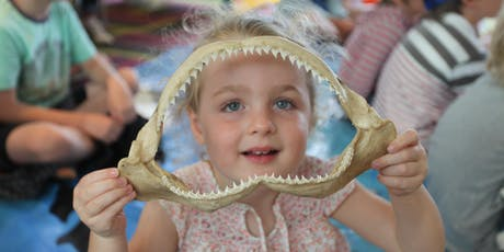 Shark Detectives (ages 5-8) 17 January 2020 - Queenscliff tickets