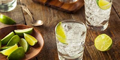 Koblenz | Gin tasting