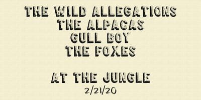 The Wild Allegations, The Alpacas, Gull Boy, The Foxes