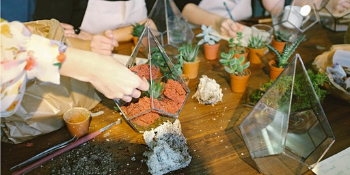 Terrariums - Summer Holiday Program
