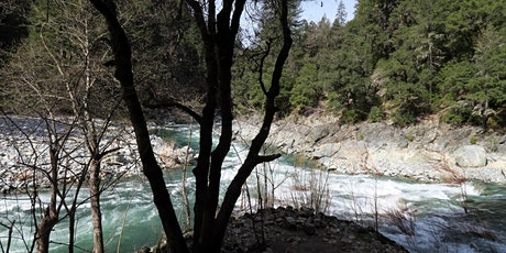Hike on Canyon Creek Trail with Hank Meals tickets