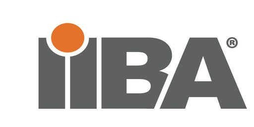 IIBA End of Year Networking Event for 2019