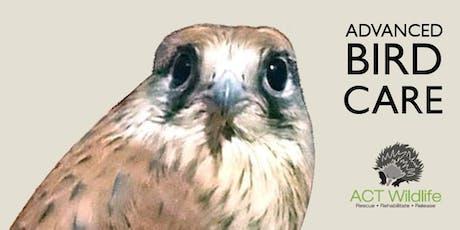 Advanced Bird Care - ACT Wildlife tickets