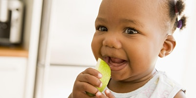Introduction to Solid Foods - follow on, Sopwell, St Albans, 13:30 - 15:00, 10/02/2020