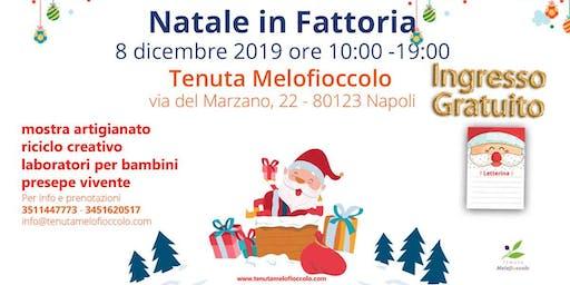 Natale in Fattoria alla Tenuta Melofioccolo - Ingresso Gratuito