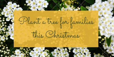 Plant a Christmas Family Tree - Bristol tickets
