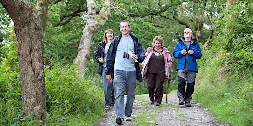 Wellbeing Walk - Walk & Talk with the RSPB at Strumpshaw Fen