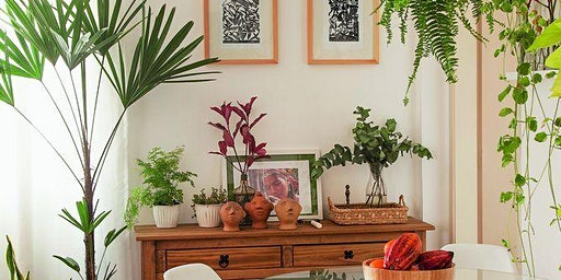 Oficina Cultivo de Plantas em Casa